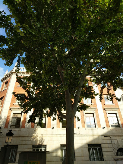 Agencia tributaria cita previa Albacete