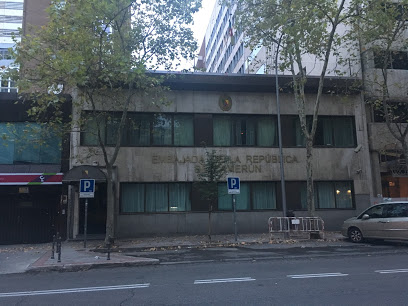 Cita previa Consulado de Camerún en Madrid